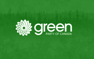 Voting in the 2020 GPC Federal Council Election